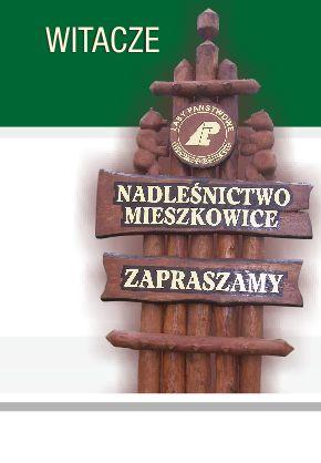 WITACZE-TOTEMY-LESNE-POLCZYN-KOSZALIN-2