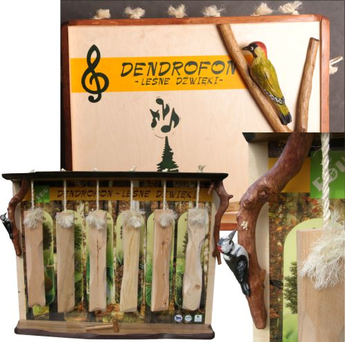 dendrofon-lesne-drzwieki-przyrzad-edukacyjny