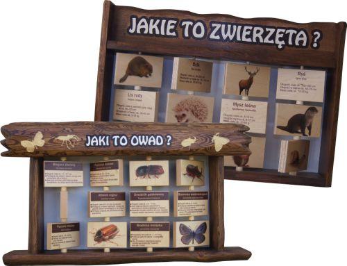 tablice-interaktywne-owady-zwierzeta-lesne
